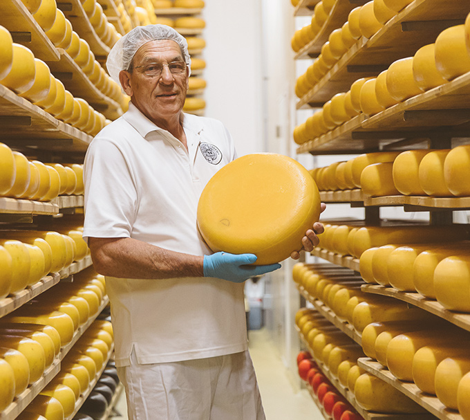 7. OXFORD COUNTY: SAY CHEESE