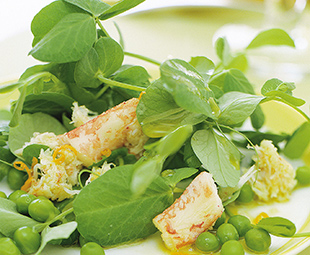 Crab and Pea Sprout Salad