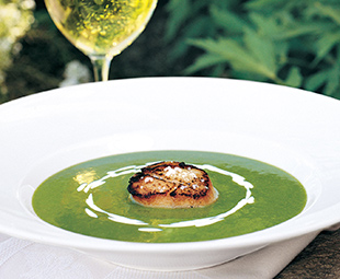 Chilled Pea and Lovage Soup with Seared Sea Scallop