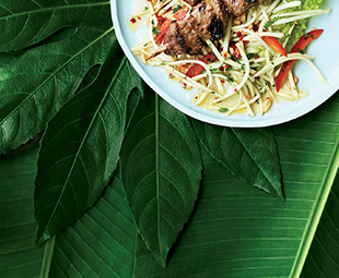 Grilled Beef Kebabs with Green Mango Salad