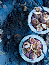 Rosé Wine-Steamed Clams