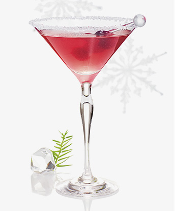 1609-Holiday-2.2-IB-VODKA8
