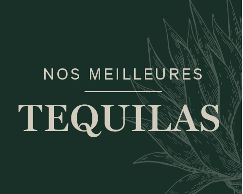 Nos meilleures tequilas