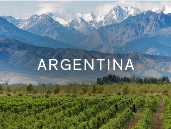 Shop wines from Destination Collection Argentina