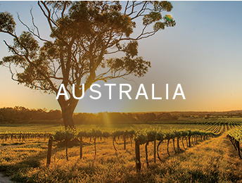 Shop wines of Destination Collection Australia