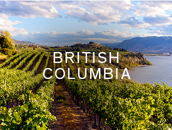 Shop wines from British Columbia