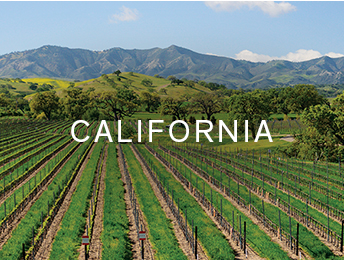 Shop wines from Destination Collection California