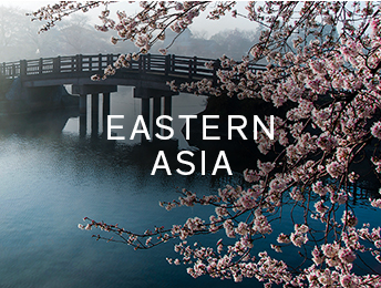 Shop products from Eastern Asia
