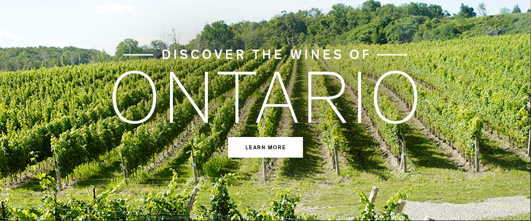 Discover the wines of Ontario