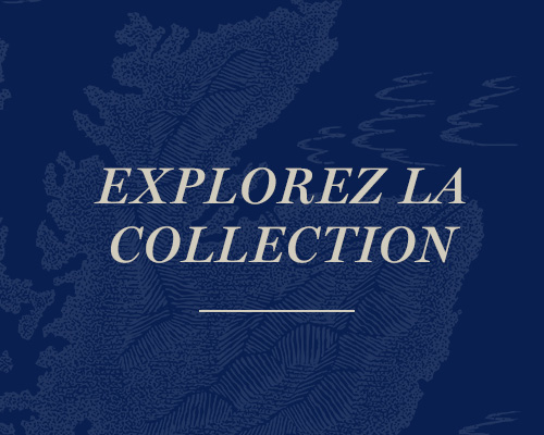 Explorez la collection