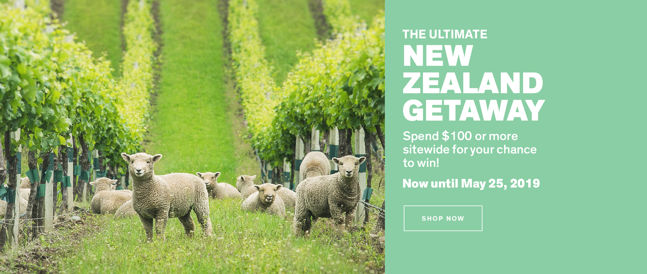 The Ultimate New Zealand Getaway. Spend $100 or more sitewide for your chance to win! Until May 25, 2019. Shop Now.