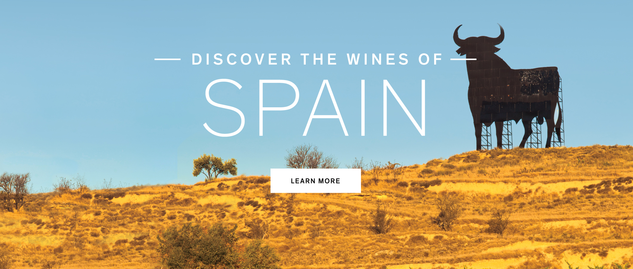 Discover the wines of Spain