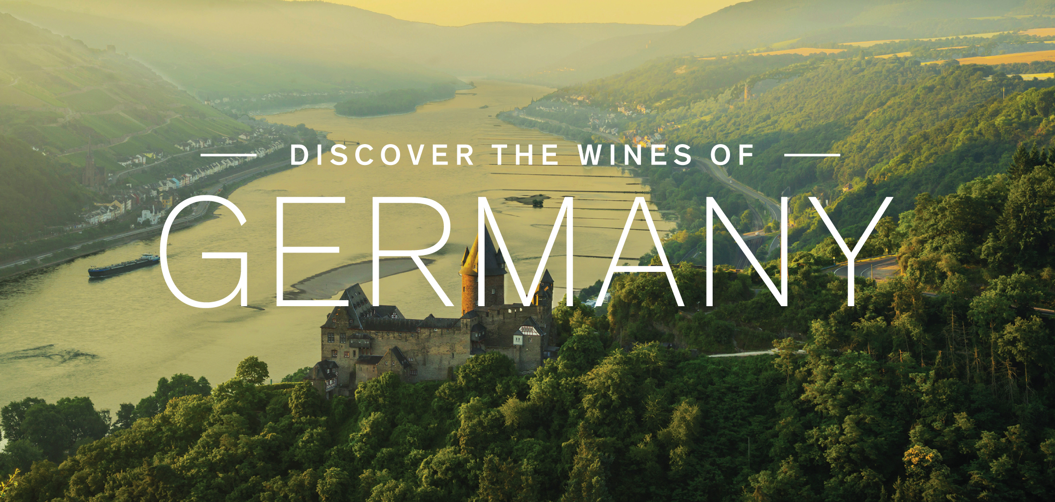 Discover the Wines of Germany