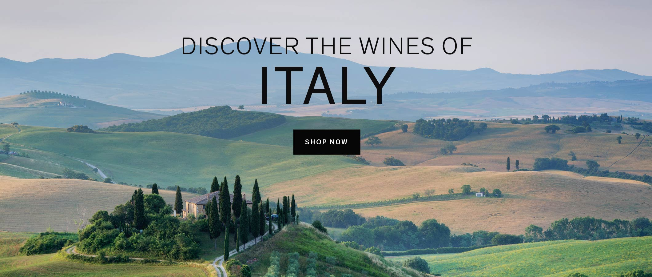 Discover the wines of Italy