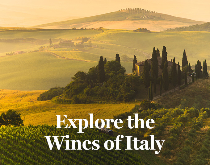 Explore the Wines of Italy