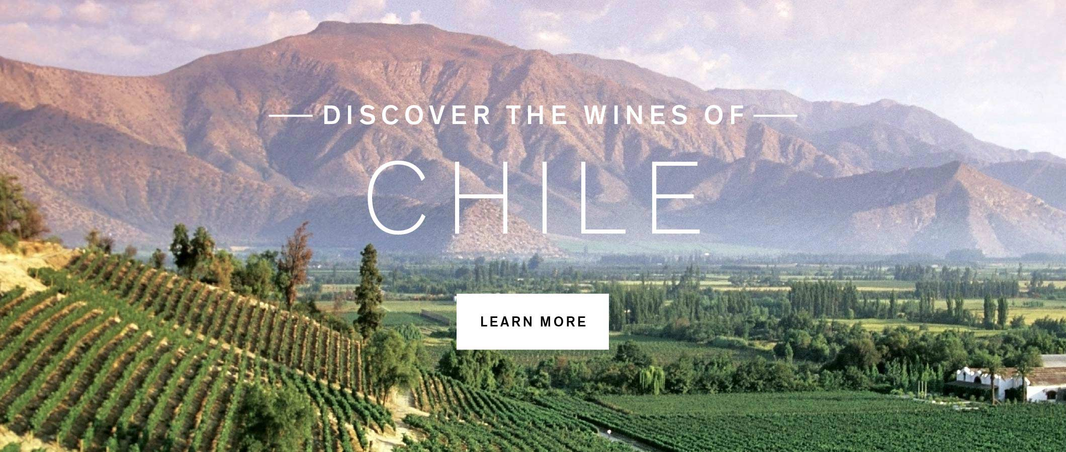 Discover our Enhanced Selection of Products from Chile. Explore Now