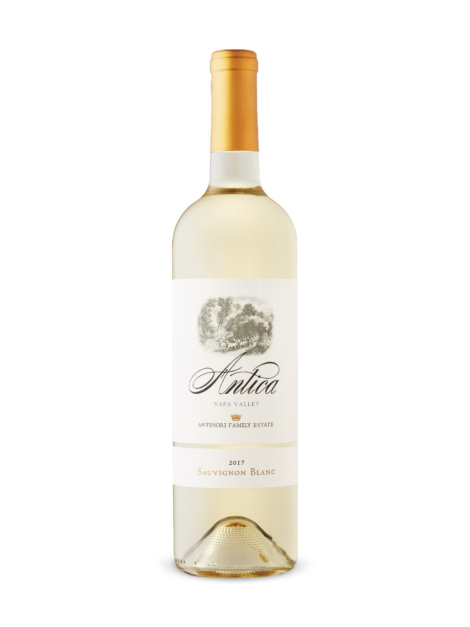 Image for Antica Sauvignon Blanc 2017 from LCBO