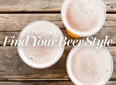 Find your beer style