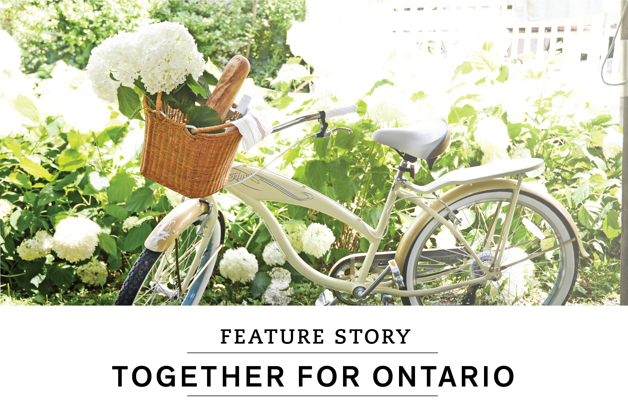 Feature story: Together for Ontario