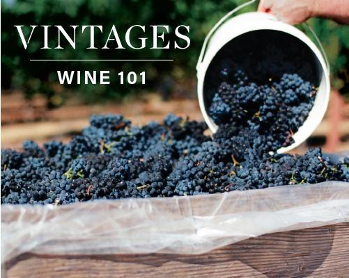 Learn With Vintages: Wine 101