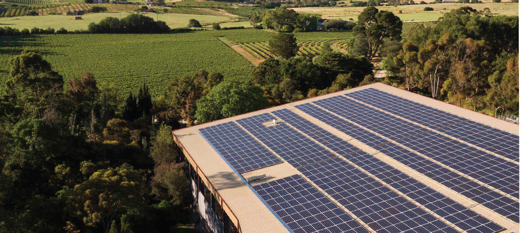 An image of a winery whose roof is fitted edge-to-edge with solar panels and surrounded by verdant vineyards.