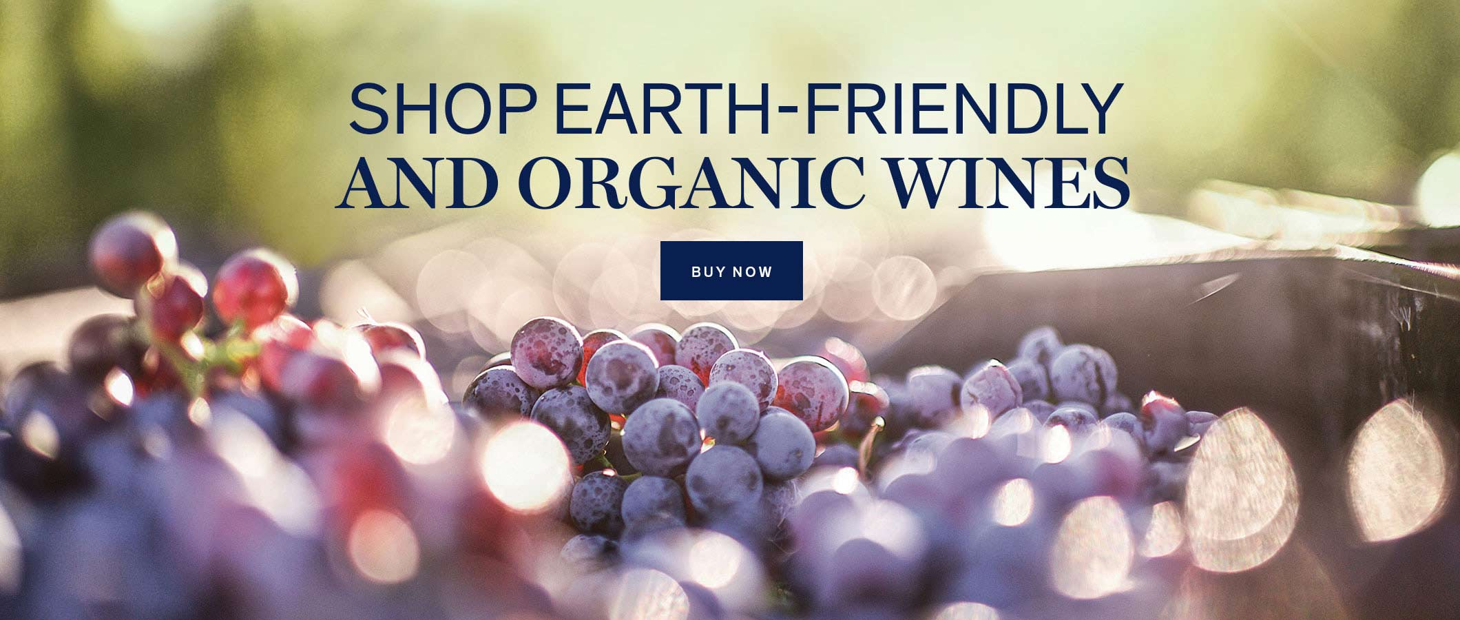 Shop Earth-friendly and Organic Wines  BUY NOW