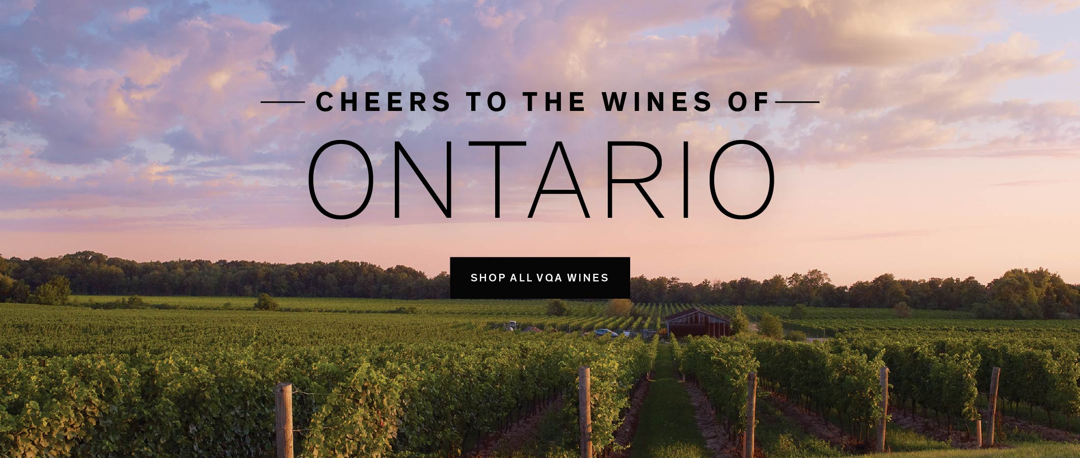 Cheers to the Wines of Ontario
